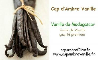 Cap-and-amber-vanilla