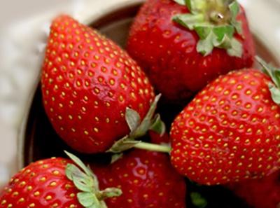 Carpaccio de fraises reduction vinaigre balsamique 1