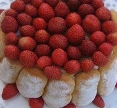 Charlotte aux fraises juin