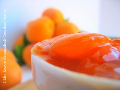 confiture-d-abricots