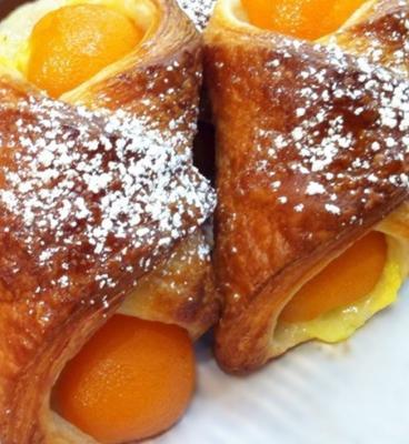 Oranais aux abricot 2072013
